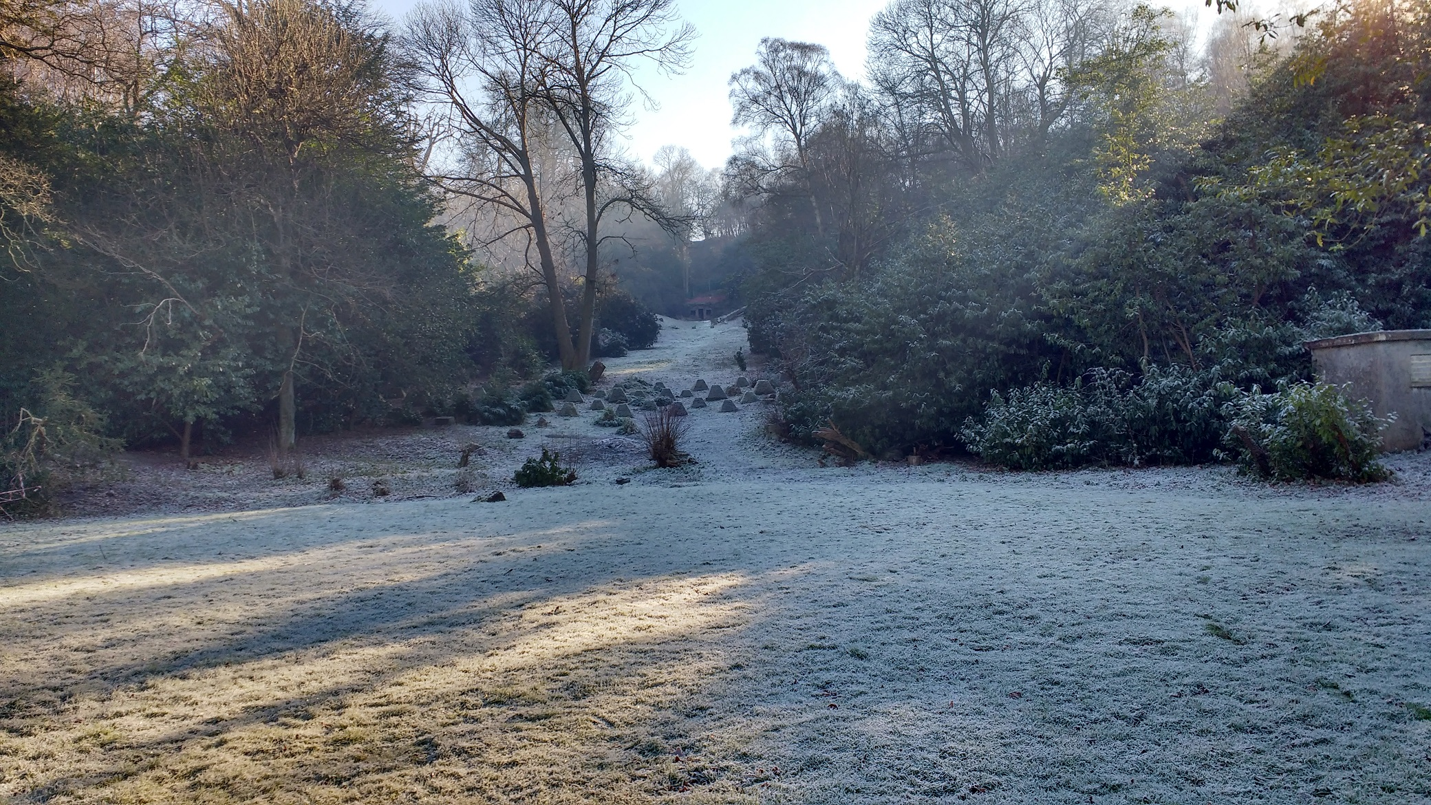 frosty view