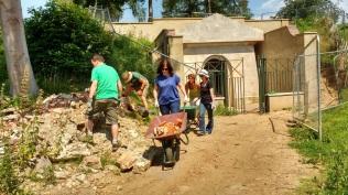summer-volunteer-help