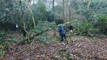FoD clearing the undergrowth from the hisroic paths, 2016.