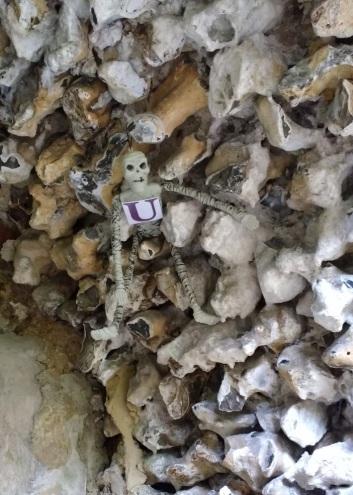 sneaky-skeleton