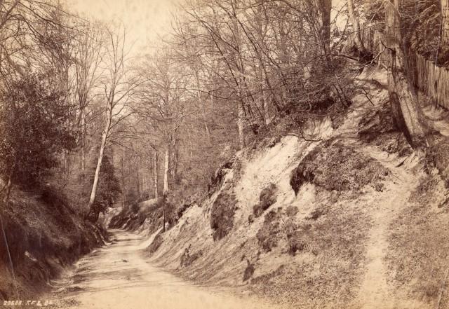 Photo 3 Chart Lane (A)